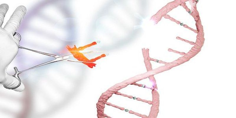 Scientists Reverse Their Controversial Findings of CRISPR's Off-Target Effects