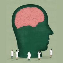 Are the Brains of Transgender People Different from Those of Cisgender People?