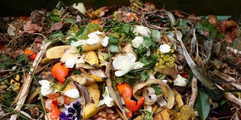 Organic Fertilizers Rife With Microplastics: Study