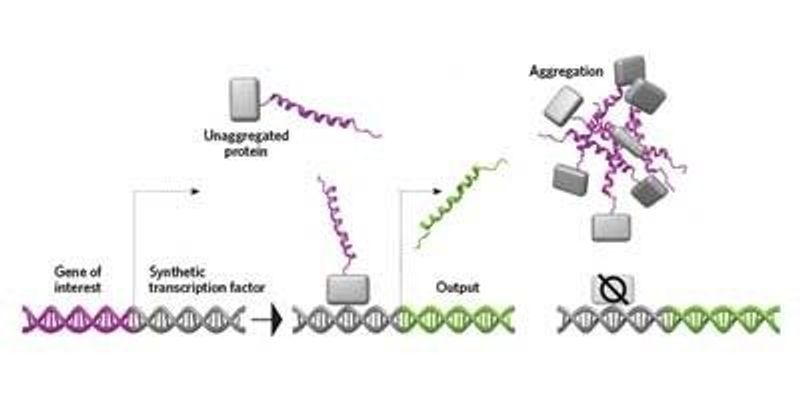 Detecting Protein Clumps