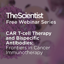 CAR T-cell Therapy and Bispecific Antibodies: Frontiers in Cancer Immunotherapy