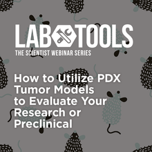 How to Utilize PDX Tumor Models to Evaluate Your Research or Preclinical Compounds