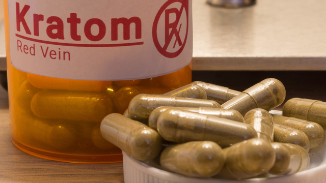 FDA Declares Kratom an Opioid  We're Here to Explain What It