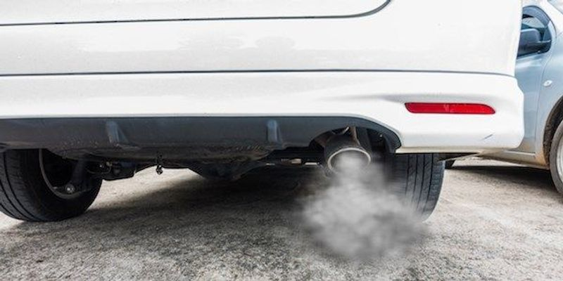 German Carmakers Funded Tests of Diesel Fumes on Monkeys and Humans