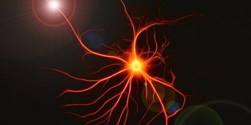 Cellular Senescence in Astrocytes May Play Central Role in Parkinson's Disease