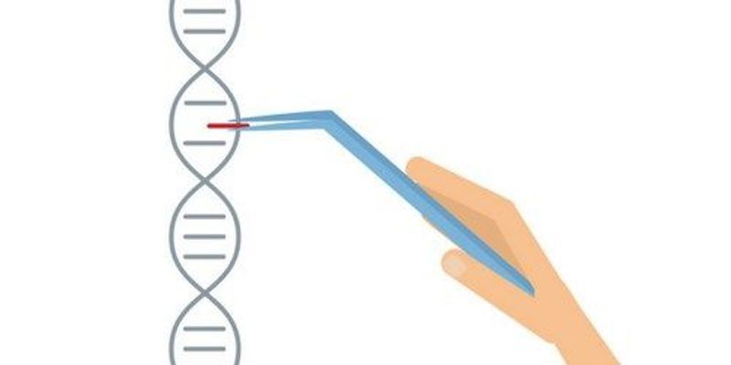 CRISPR Trial for Cancer Patients Proposed