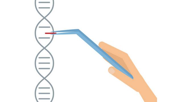 建议的癌症患者的CRISPR试验