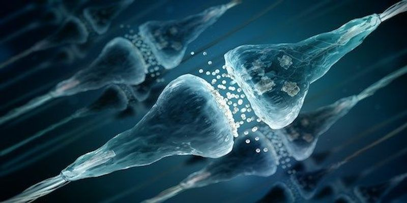 Neurons Use Virus-Like Proteins to Transmit Information