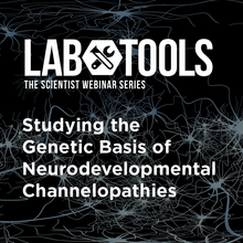 Studying the Genetic Basis of Neurodevelopmental Channelopathies