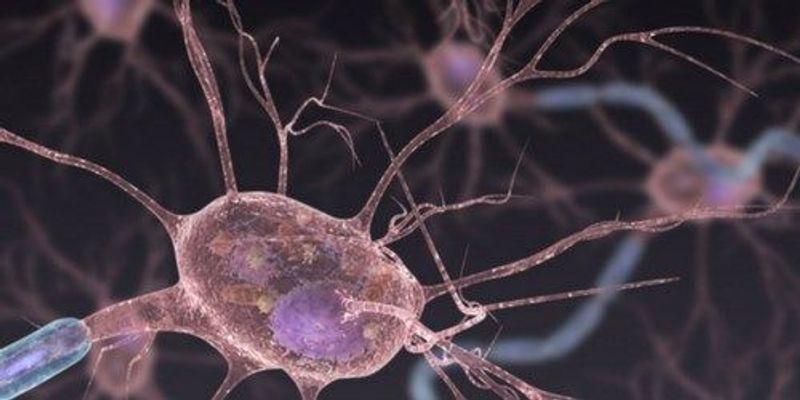 CRISPR Proves Promising for Treating ALS in Mice