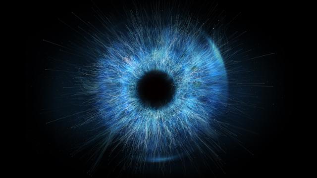 a retina