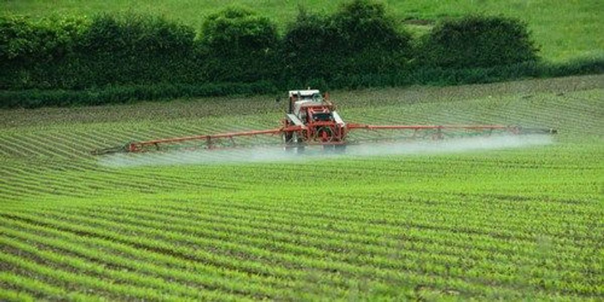 long-term-study-finds-that-the-pesticide