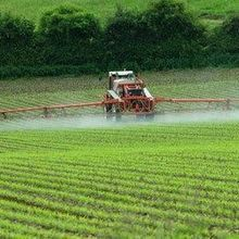 Long-term Study Finds That the Pesticide Glyphosate Does Not Cause Cancer