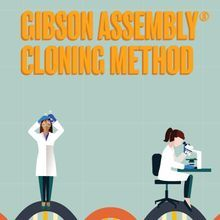 Gibson Assembly Cloning Method