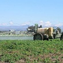 WHO Cherry-Picked Data on Pesticide, Investigation Finds