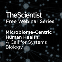 Microbiome-Centric Human Health: A Call for Systems Biology