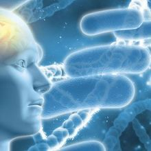 Do Microbes Trigger Alzheimer's Disease?