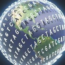 Global Patterns of Human Epigenetic Variation
