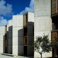 Big Gender Gaps in Salk Institute Faculty: Report