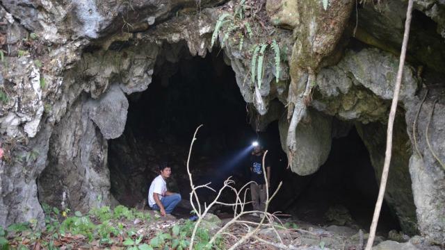 Lida Ajer cave