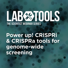 Power Up! CRISPRi & CRISPRa Tools for Genome-Wide Screening