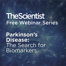 Parkinson's Disease: The Search for Biomarkers