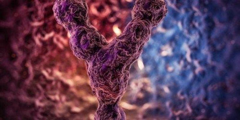 Scientists Destroy Entire Chromosome with CRISPR