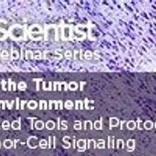 Mining the Tumor Microenvironment: Advanced Tools and Protocols for Tumor-Cell Signaling