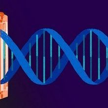 Major CRISPR Patent-Holders Agree to Patent Pool