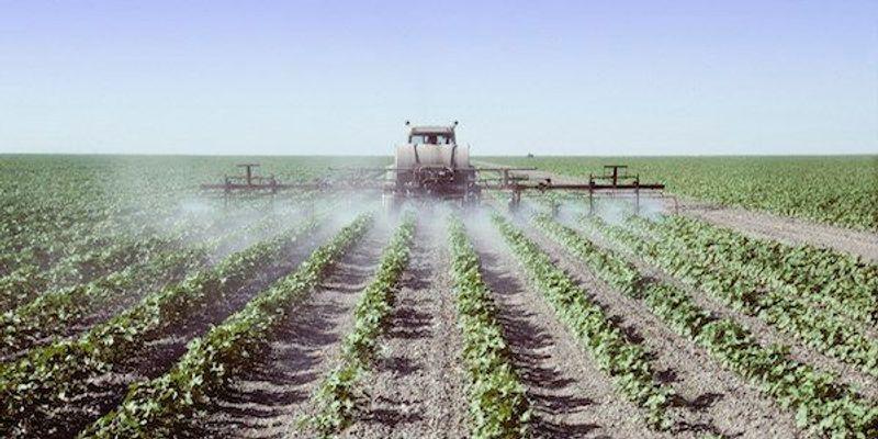 E.U. to Identify Endocrine Disrupters in Pesticides