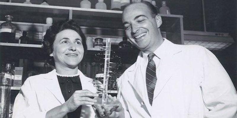 Sylvy Kornberg: Biography of a Biochemist