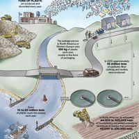 Infographic: Plastic Pollution