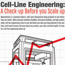 Cell-Line Engineering: A Check-up Before you Scale up