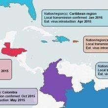 Tracing Zika's Spread Through Genetics