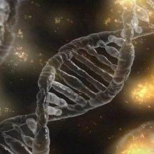 New Gene Therapy Shrinks Aggressive Tumors in Mice