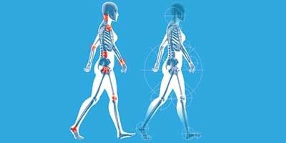 Understanding Body Ownership and Agency | The Scientist Magazine®