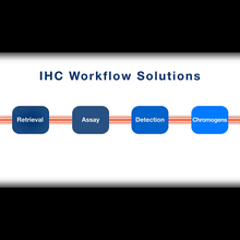 Enzo: Immunohistochemistry Workflow Solutions