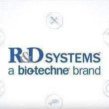 R&D Systems: Custom Services