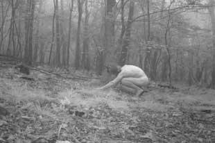 Nackte menschen auf trail cam erwischt, Xxx mittelalterliches jugendlich