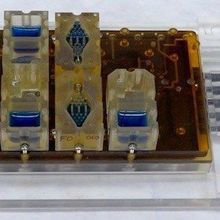 Mini Female Reproductive System on a Chip