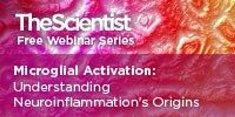 Microglial Activation: Understanding Neuroinflammation's Origins