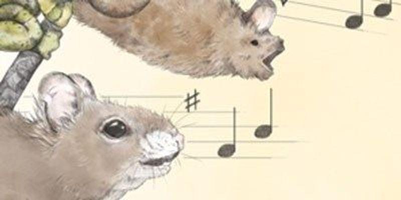 Song Around the Animal Kingdom