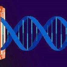 Broad Wins CRISPR Patent Interference Case