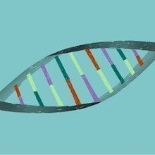 National Academies: Germline Editing Should be Permitted