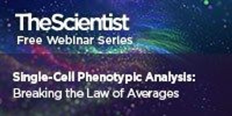 Single-Cell Phenotypic Analysis: Breaking the Law of Averages