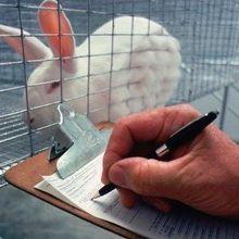 USDA Removes Animal Welfare Data From Public Website