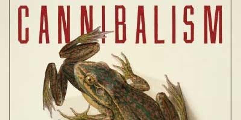 Cannibalism: Not That Weird