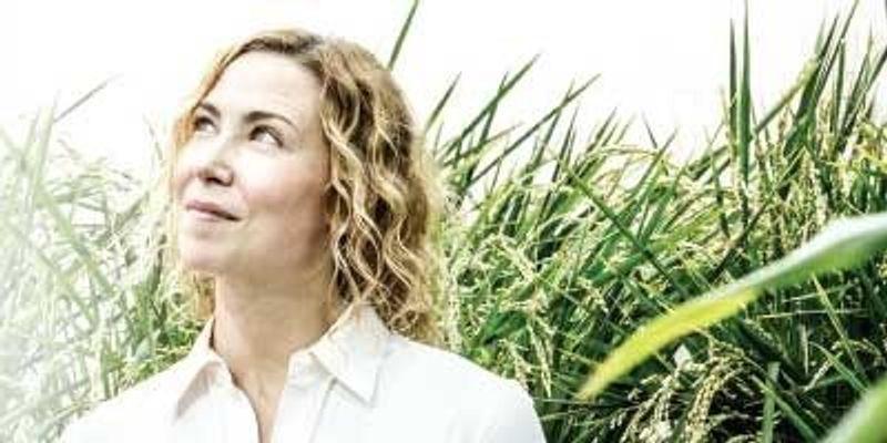 Andrea Eveland Teases Apart Gene Networks in Crop Plants