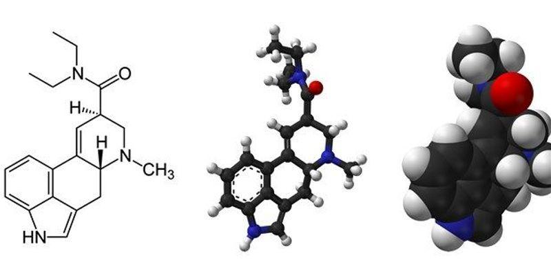 How LSD Affects the Brain