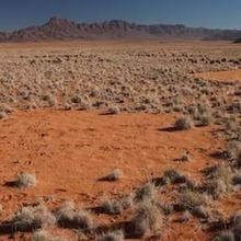 Another Explanation for Africa's Enigmatic Fairy Circles